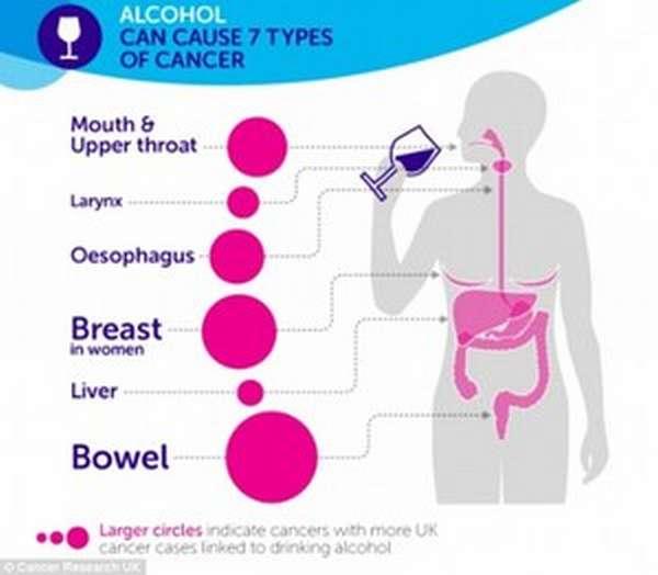 Как алкоголь провоцирует рак