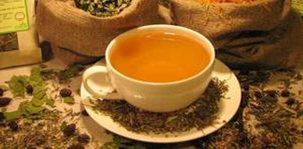 Монастырский чай: польза