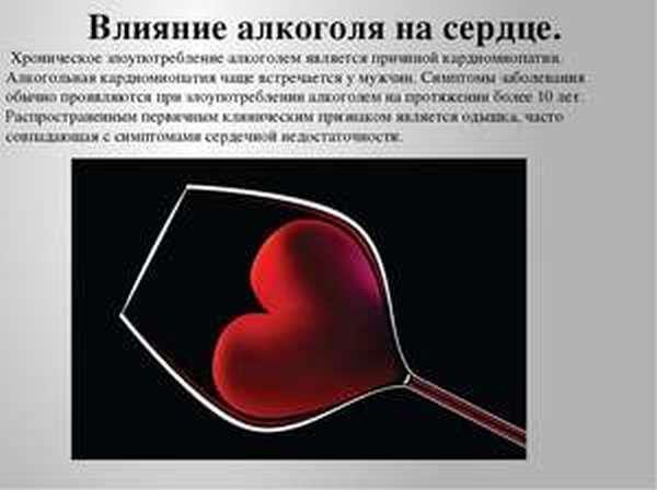 Как работает сердце при приеме алкоголя