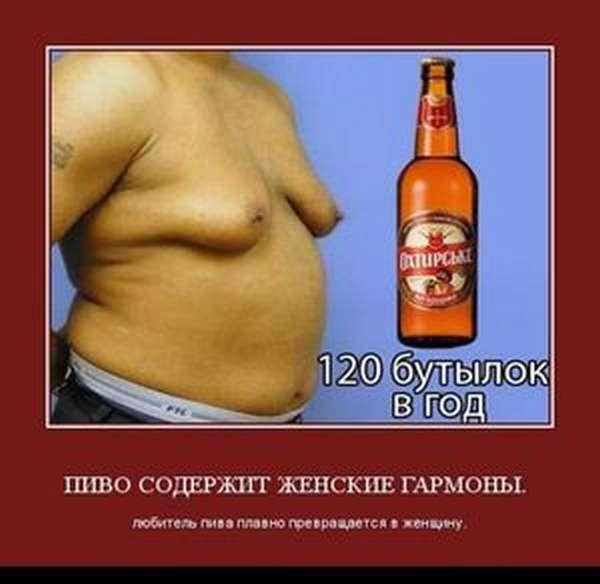 Как влияет пиво на организм