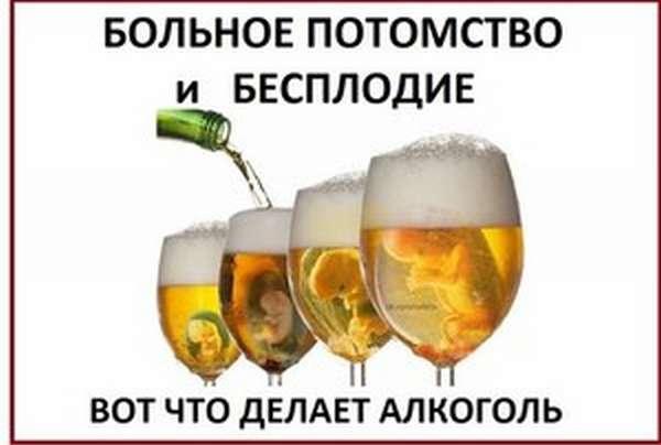 Влияние пиво на мужчкой организм