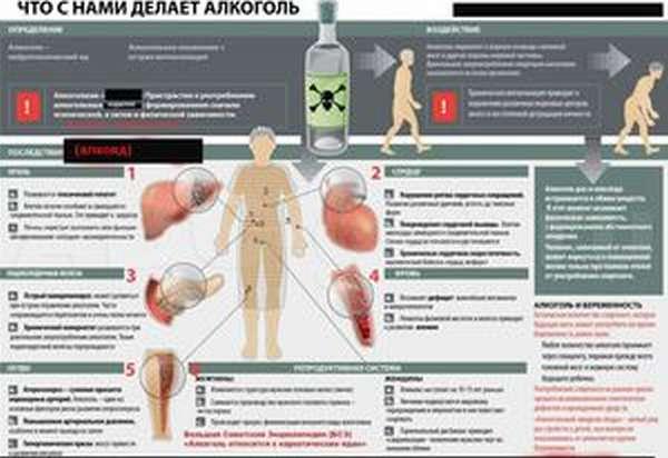 Вред алкоголя для организма