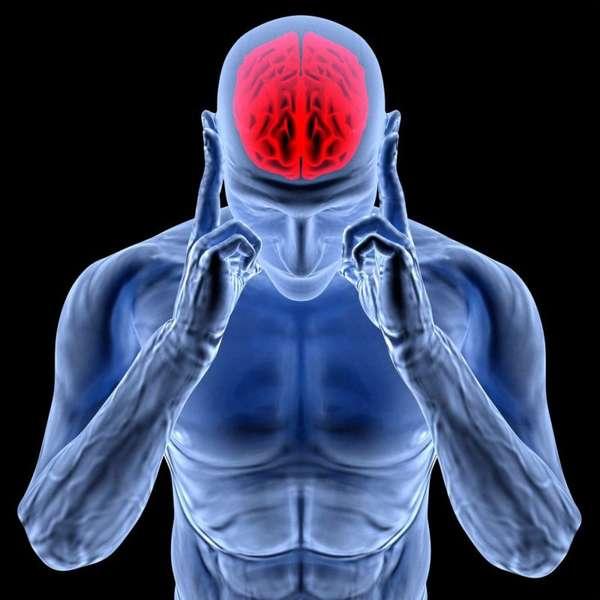 Пикамилон улучшает кровообращение клеток мозга