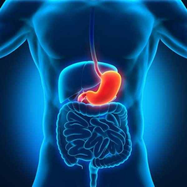 Дистрофические и воспалительные изменения в слизистой оболочке желудка