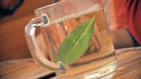 Лавровый лист в воде