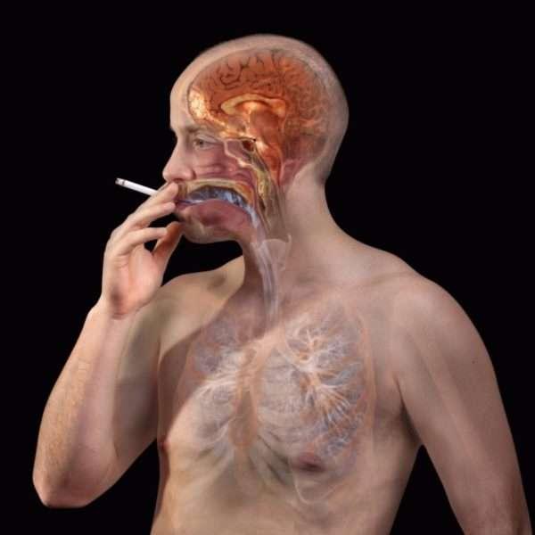 Влияние сигареты на организм
