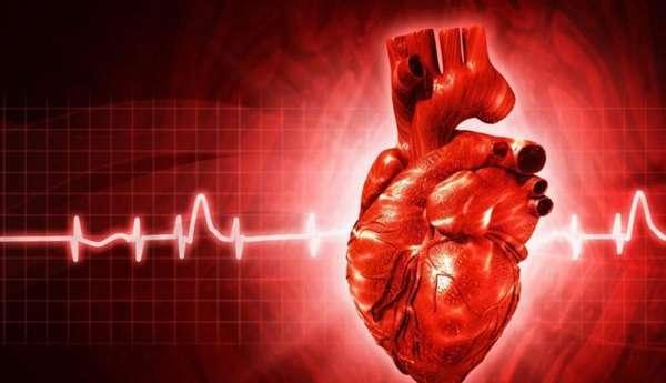 Ритм сердцебиения