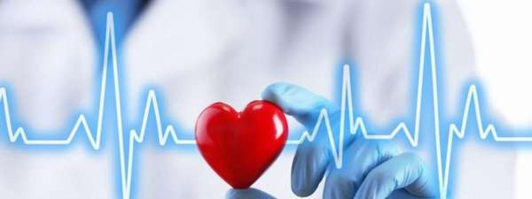 Макет сердечка и сердечный ритм