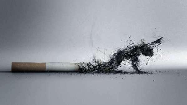 Сигарета и пепел