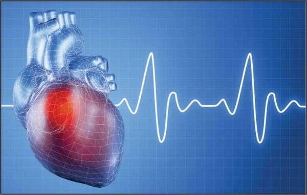 Такт сердцебиения