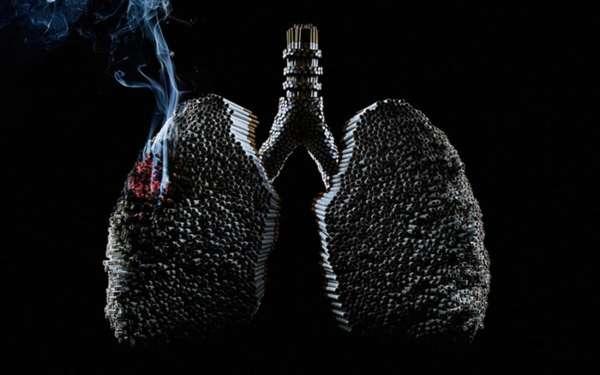 Макет легких из сигарет