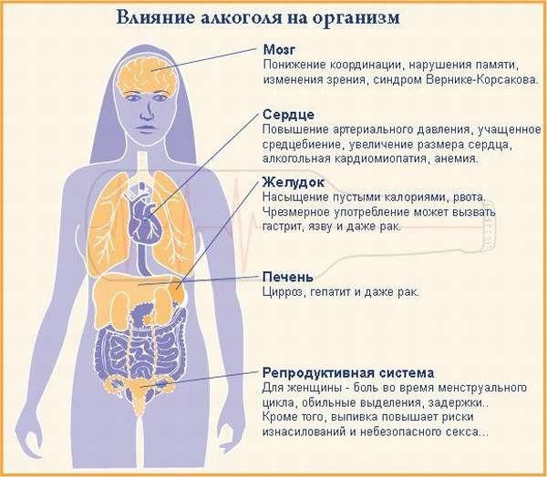 Как алкоголь влияет на здоровье