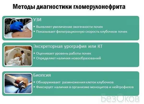 Способы диагностики гломерулонефрита