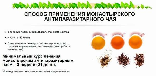 Как пить Монастырский антипаразитарный чай
