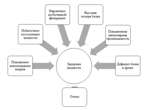 Схема развития отеков