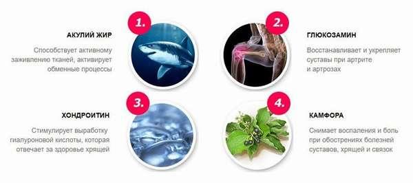 Акулий жир крем состав