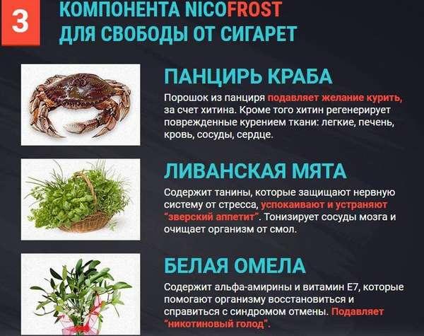 Nicofrost состав