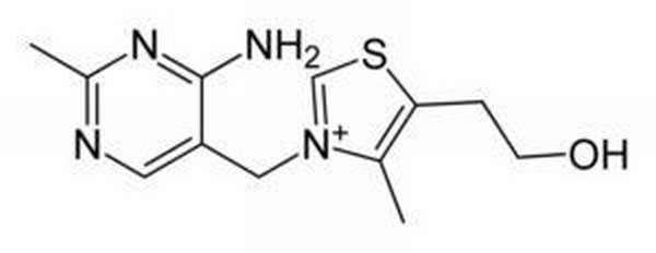 Тиамин (витамин В1)