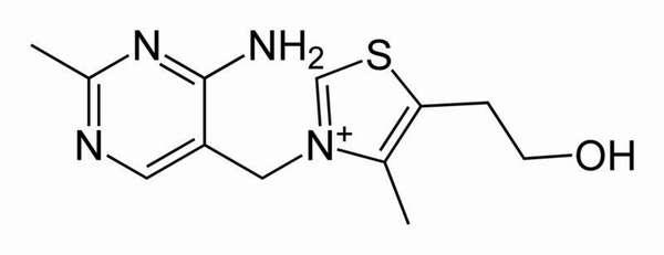 Структура тиамина